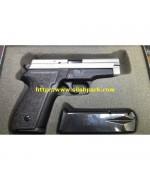 Sig Sauer P229