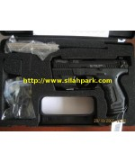 Walther P22
